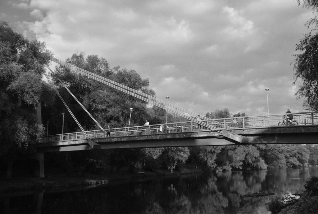 Podul Intelectualilor din Oradea