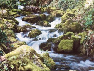 7 cascade din Bihor de o frumusețe rară