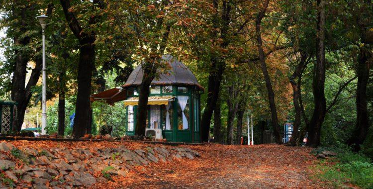 Toamna... lungă, slabă și zăludă - Ghid Local Oradea