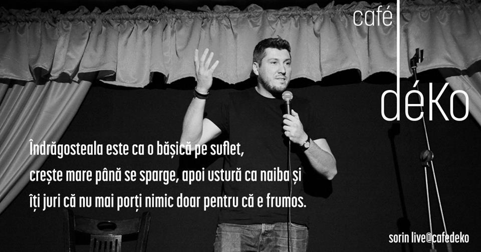 sorin_parcalab_3