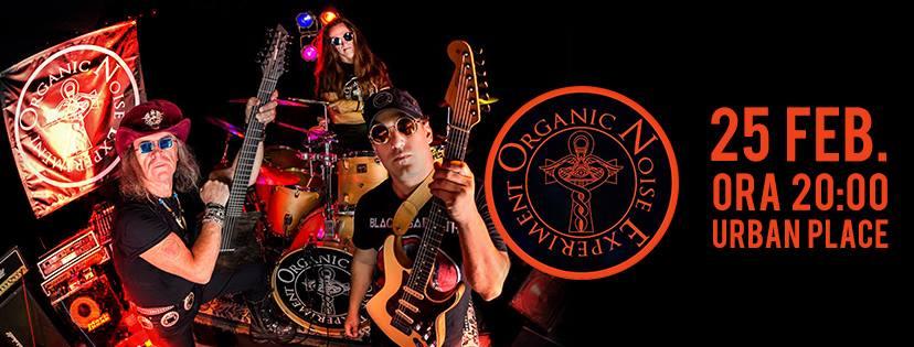 Concert: Organic Noise Experiment - Oradea