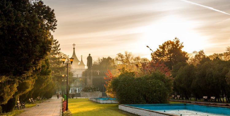 În Oradea vor fi plantați 3000 de arbori