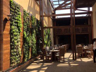 Restaurantul Rosecas
