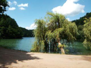 7 locuri din Bihor unde te poți bucura de natură.