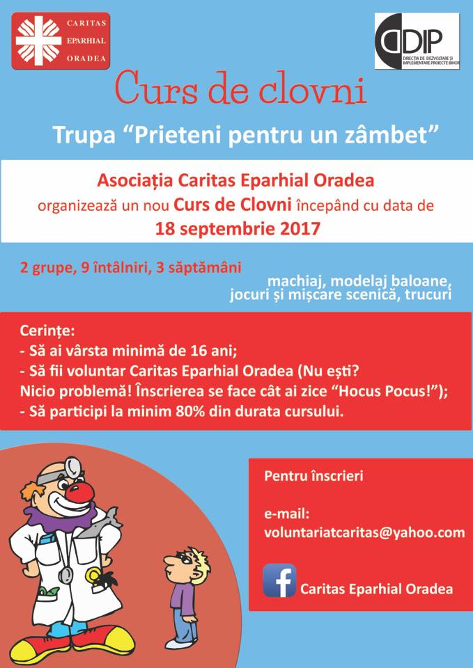 oportunități de voluntariat