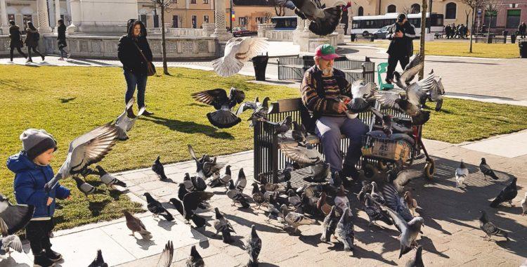 Ce poți face în Oradea, în weekendul 23-25 februarie