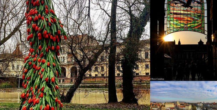 Top 5 fotografii cu Oradea ..