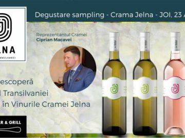 Descopera Spiritul Transilvaniei in Vinurile Cramei Jelna