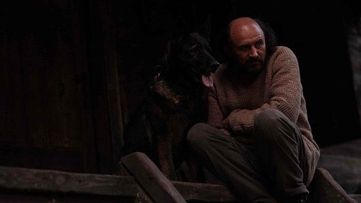 Cele mai bune filme românești ale anului se văd la prima ediție TIFF Oradea