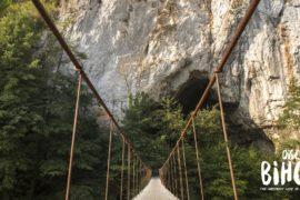 Excursie de 1 zi: Descoperă Pădurea Craiului