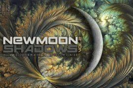 NewMoon Shadows vol. 2.