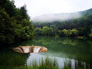 Lacul Vida