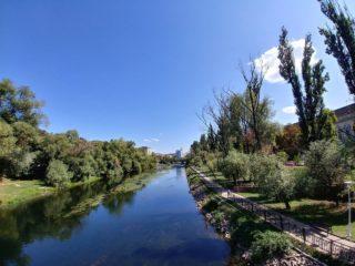 5 ape care traversează Oradea