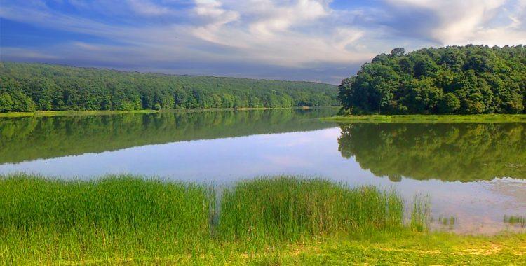 Lacul de la Șauaieu