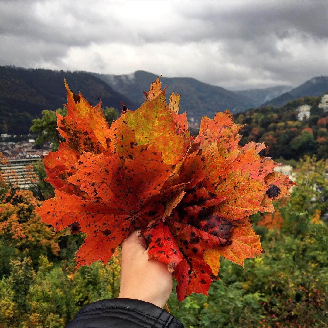 Ce (mai) poți face în Brașov în săptămâna 9 - 15 octombrie?