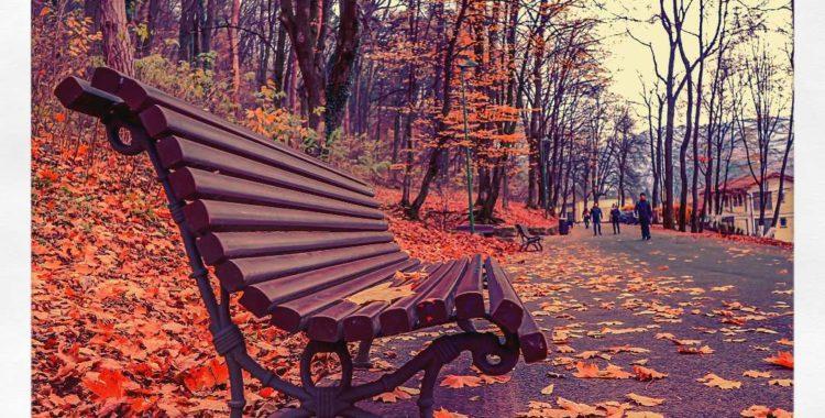 Ce poți face în Brașov în săptămâna 20 – 26 noiembrie?