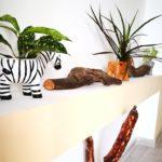 Eco-Safari Apartament