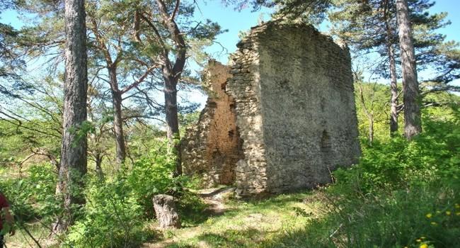 Cetatea Crizbav Brasov