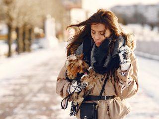 Este momentul potrivit pentru a cumpăra o geacă de damă pentru iarnă. Ghid de cumpărături