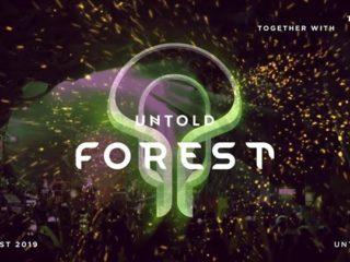 Line-up scene Fortune si Forest la Untold 2019