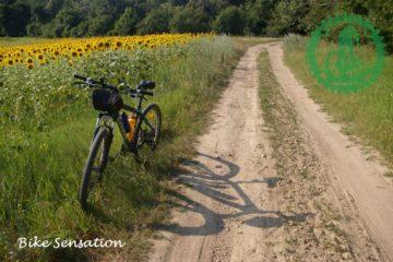 Bike Sensation